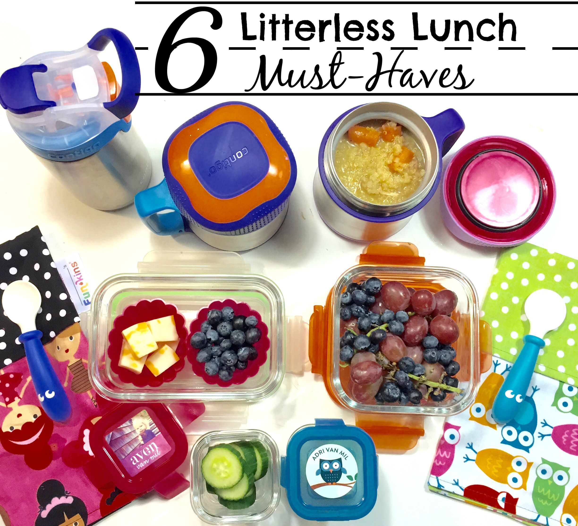 6 Litterless Lunch Must Haves